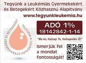 Tegyünk a leukémiás Gyermekekért és Betegekért Közhasznú Alapítvány, www.tegyunkleukemia.hu